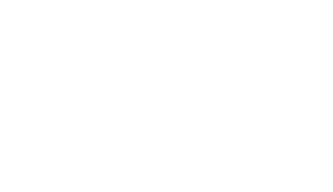 Practical Design Services LLC